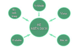 he-mien-dich-cua-be